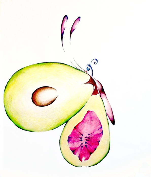 """Figacado"" 20″ x 24″ Colored Pencil on Paper"