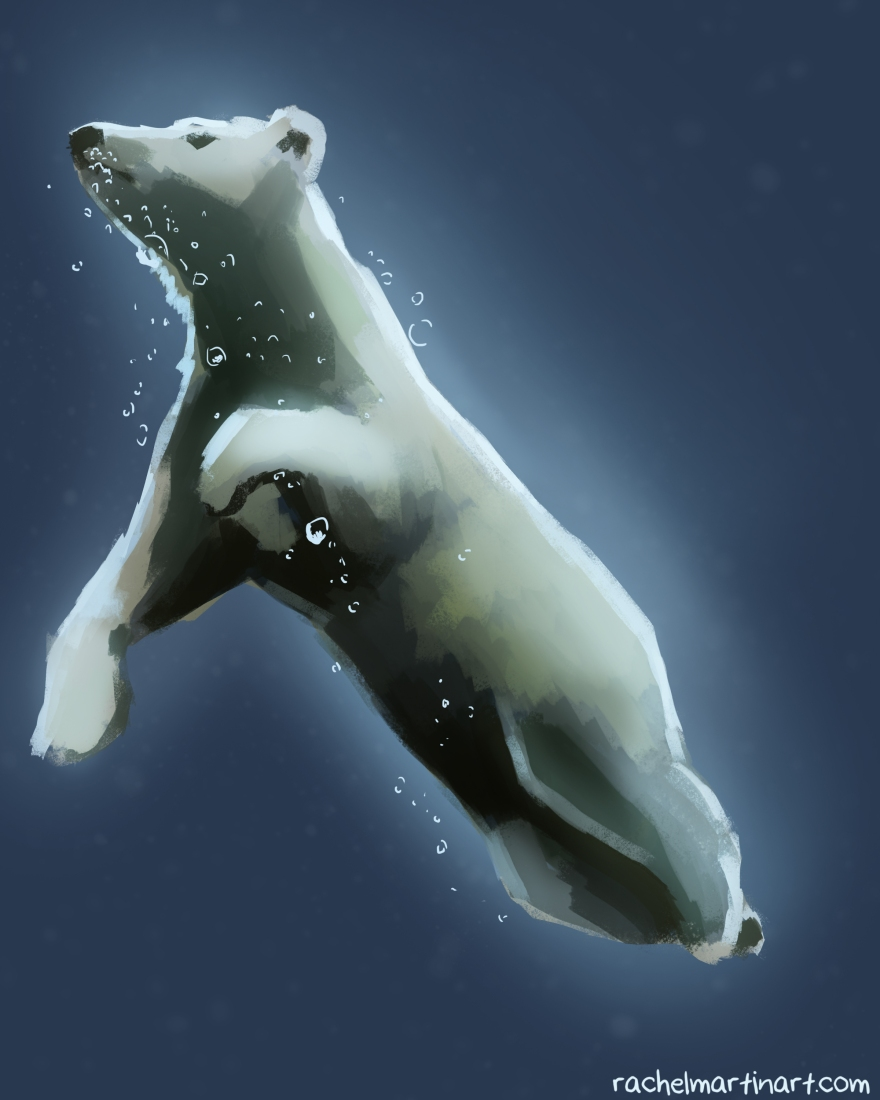 polar bear bubbles